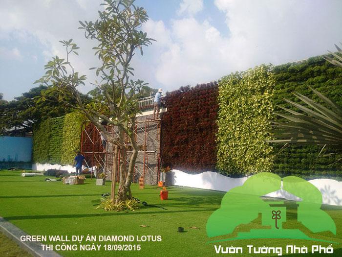 vuon-tuong-dung-minigarden-BĐS-phuc-khang 2