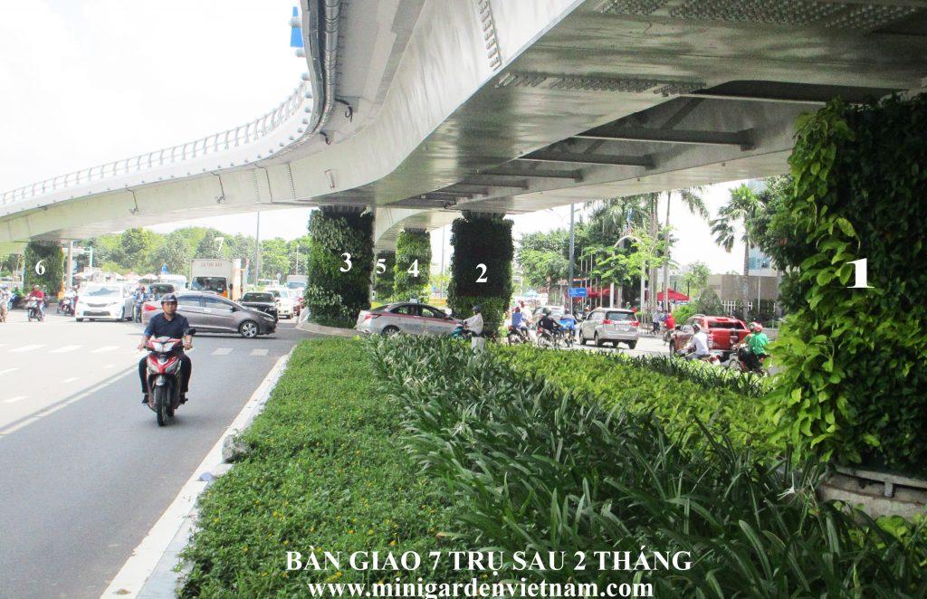 so-sanh-tuong-xanh-dung-Minigarden-sau-2-thang-3-1024x662