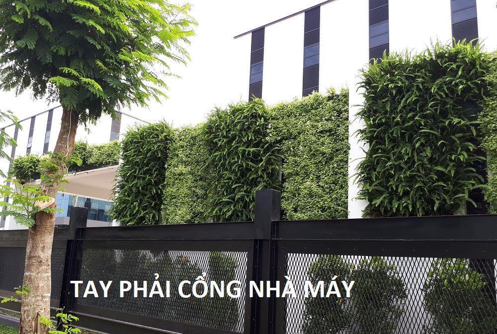 tuong-xanh-dung-minigarden-nha-may-long-an 7