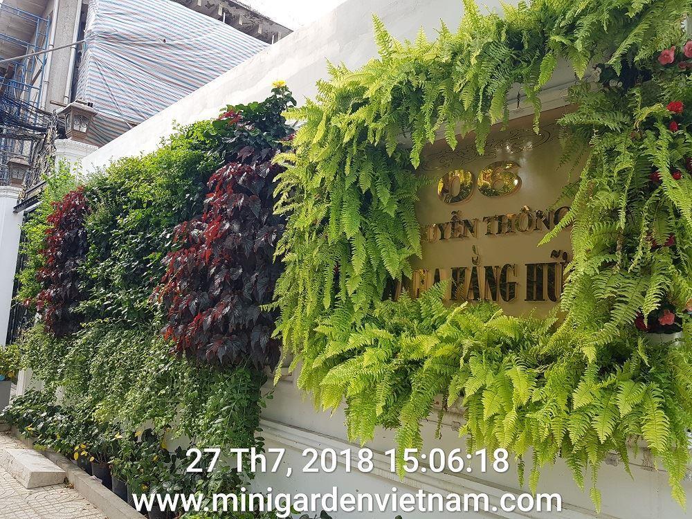 thi-cong-tuong-dung-minigarden