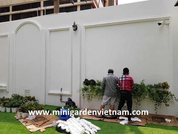 tuong-dung-minigarden-vietnam-bac-dung-dai-nam 9