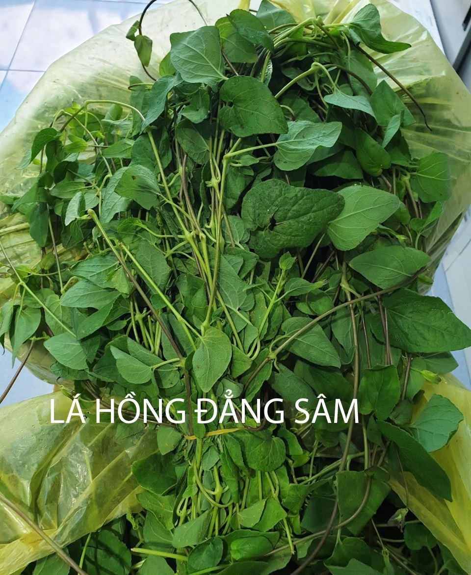 la-hong-dang-sam-lam-rau-sach 3