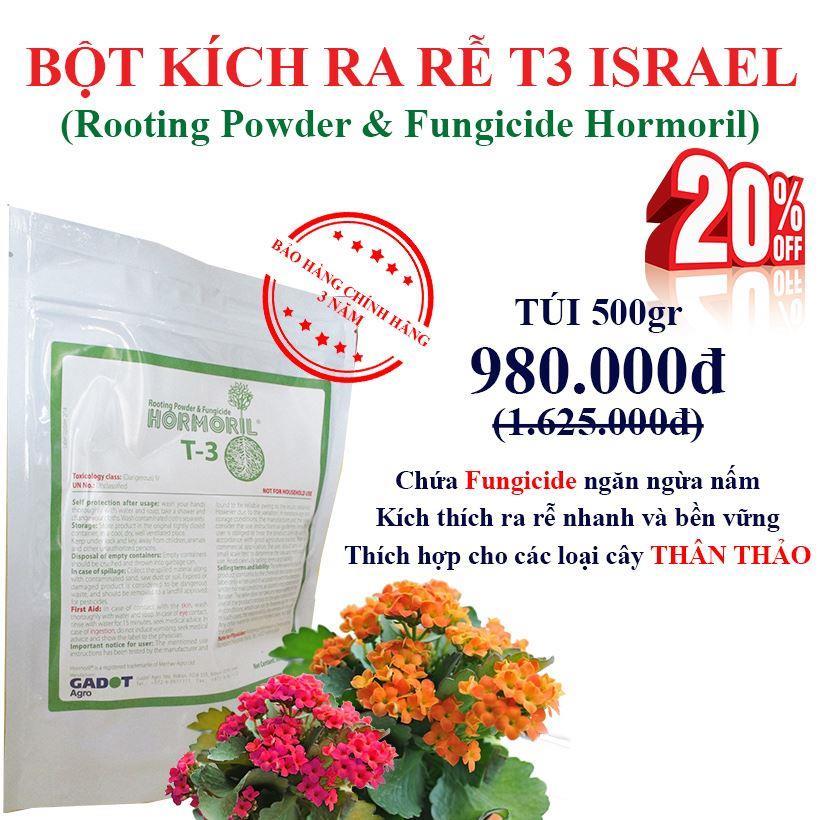 bot-kich-ra-re-Israel