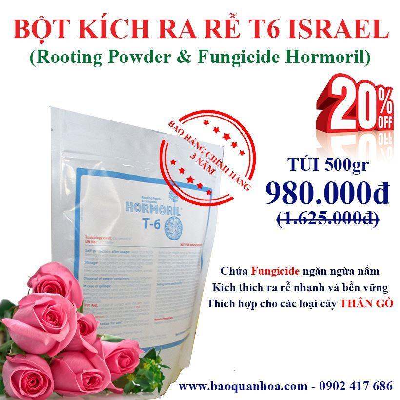 bot-kich-ra-re-giam-canh-hoa-hong-israel