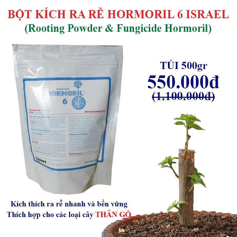 bot-kich-ra-re-hormoril-6-israel-danh-cho-cay-than-gi